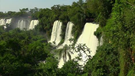 Iguazu-Falls-Argentinien-Blick-Mit-Palmen-Und-Dschungel