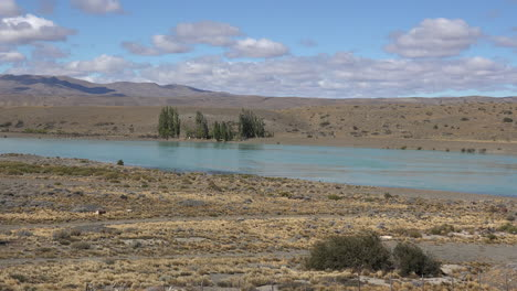 Argentina-Patagonia-trees-on-Rio-Santa-Cruz