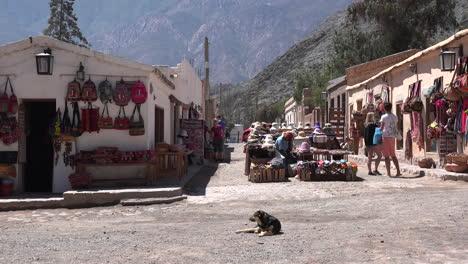Argentina-Purmamarca-Perro-Se-Encuentra-En-La-Calle