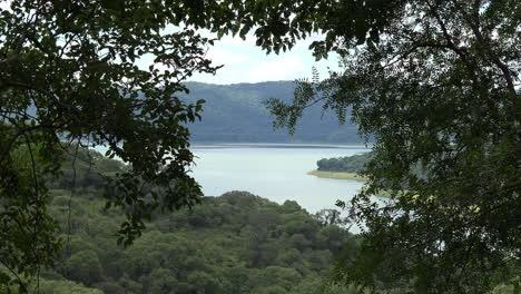 Argentina-lake-through-tree-leaves