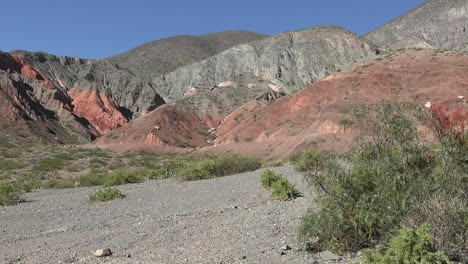 Argentina-shrub-and-red-rock-landscape-pan