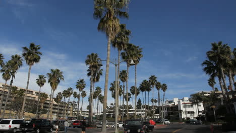 California-San-Clemente-palms-and-town