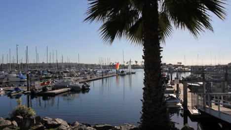 California-San-Diego-boat-docks