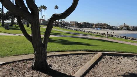 California-San-Diego-park-and-beach