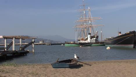 San-Francisco-California-gull-on-row-boat