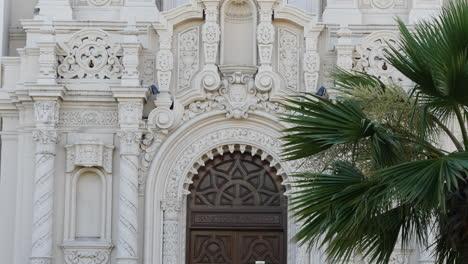 San-Francisco-California-Palmera-Y-Misión-Dolores-Basílica-Puerta