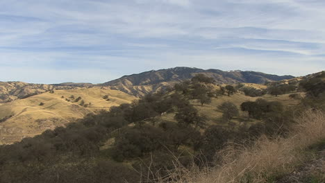 Kalifornien-Winterhügel-Mit-Eichen