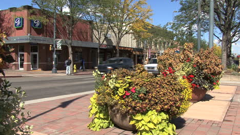 Colorado-Fort-Collins-street-with-flowers
