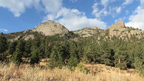 Colorado-Rocky-Mountain-Nationalpark-Mit-Bäumen