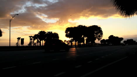 Florida-Miami-traffic-at-sunset-with-birds-mov