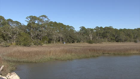 Florida-lagoon-by-a-marsh-with-woods-beyond