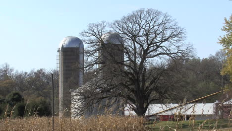 Illinois-silos