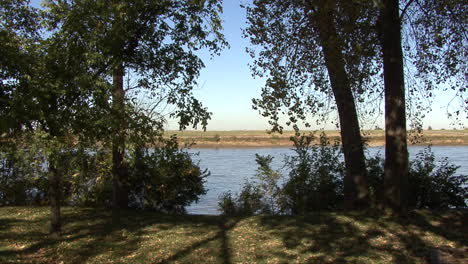 Iowa-trees-on-the-bank-of-the-Missouri-River
