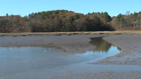 Maine-tidal-stream-and-mudflat-at-Wiscasset