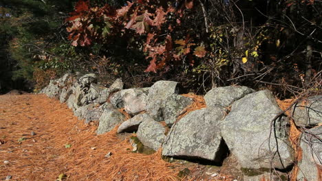 Massachusetts-New-England-stone-wall-and-leaves