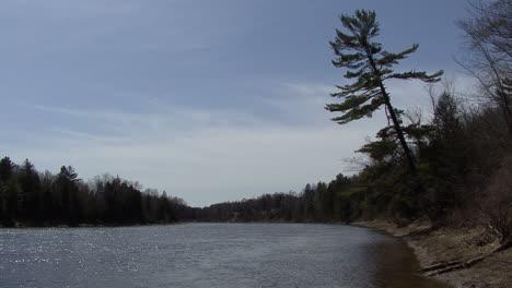 Michigan-Ein-Baum-Lehnt-Sich-über-Den-Fluss