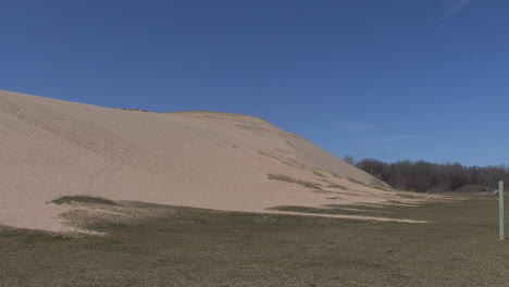 Michigan-sand-dune-and-forest