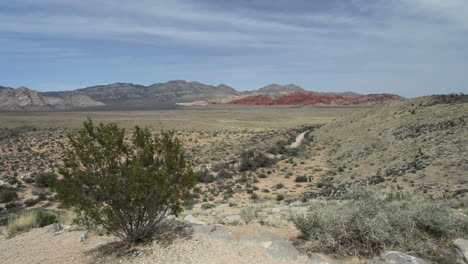 Red-Rock-Canyon-Nevada-framed-with-cresote-bush