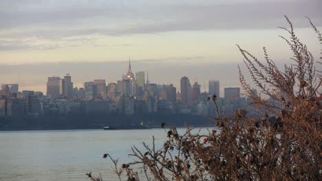Nueva-York-Manhattan-Con-Malas-Hierbas
