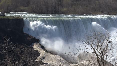 New-York-Niagara-Falls-with-leafless-tree