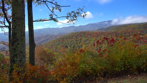 North-Carolina-Appalachian-fall