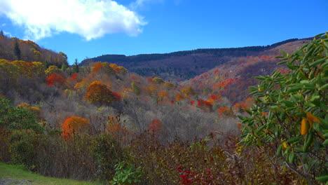 North-Carolina-Blue-Ridge-fall-mov