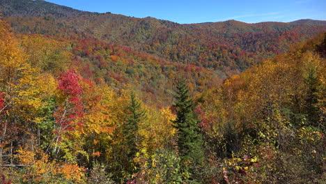 North-Carolina-Smoky-Mountain-fall-color
