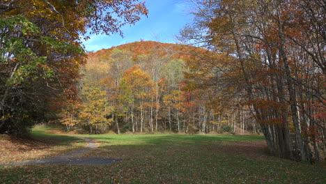 North-Carolina-Smoky-Mountain-scene