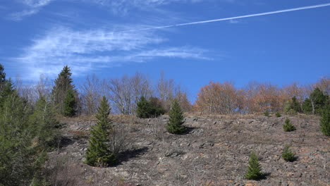North-Carolina-Smoky-Mountains-Park-evergreens-on-shale-pan