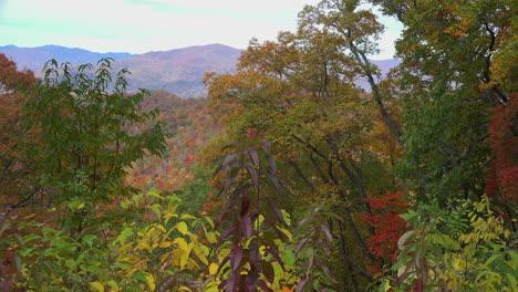 Montañas-Humeantes-De-Carolina-Del-Norte-Thomas-Dividen-Con-Hojas-De-Otoño-Acercar
