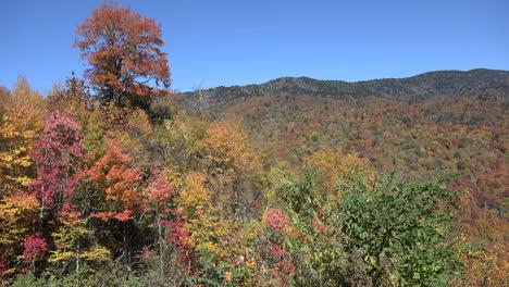 North-Carolina-Smoky-Mountains-with-fall-color