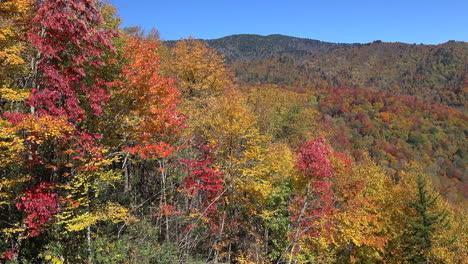 North-Carolina-colorful-fall-pan
