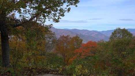 North-Carolina-colorful-fall-trees