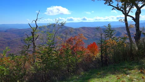North-Carolina-fall-in-the-Appalachians-mov