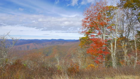 North-Carolina-red-leaves-on-tree-with-Smoky-Mountain-view