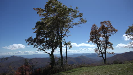 North-Carolina-trees-and-sky-in-the-Appalachians-mov