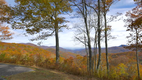 Carolina-Del-Norte-Vista-Con-árboles-En-Las-Grandes-Montañas-Humeantes