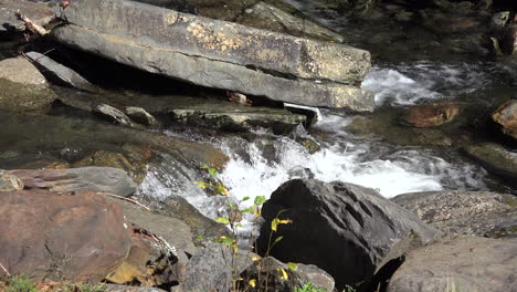 Tennessee-Rapids-flow-over-rocks