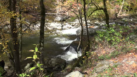 Tennessee-Smoky-Mountains-rapids-in-a-woodland-stream