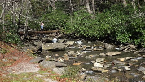 Tennessee-Smoky-Mountains-stream-and-tourists