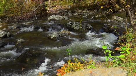 Tennessee-Smoky-Mountians-beautiful-stream