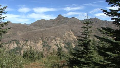 Washington-Mount-St-Helens-Hill-Mit-Heruntergefallenen-Bäumen