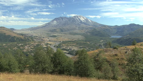 Washington-Mount-St-Helens-with-row-of-trees