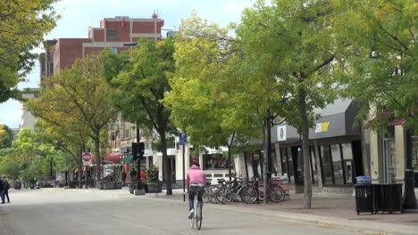 Wisconsin-Madison-State-Street-Con-Bicicleta