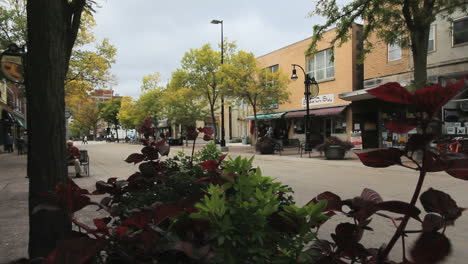 Wisconsin-Madison-Street-Y-Flores-