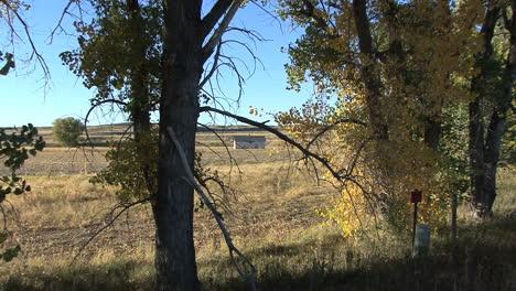 Cabaña-De-Wyoming-A-Través-De-árboles-De-Otoño