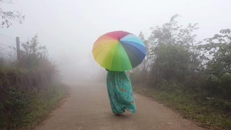 Disparo-De-Gran-Angular-De-Una-Mujer-Con-Un-Vestido-Caminando-A-Través-De-Una-Espesa-Niebla-En-Un-Bosque-Durante-Las-Primeras-Horas-De-La-Mañana-Con-Un-Colorido-Paraguas-Foto-De-Gran-Angular-De-Una-Mujer-Que-Llevaba-Un-Vestido-Caminando-A-Través-De-La-Espesa-Niebla-En-Un-Bosque-Durante-La-Madrugada-Con-Un-Colorido-Paraguas