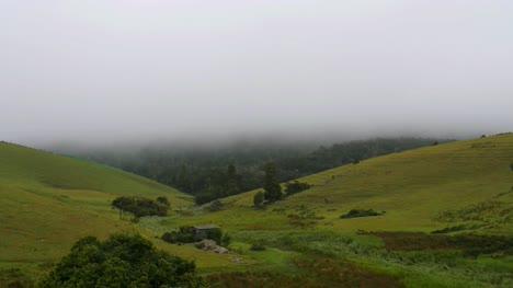 Weitwinkelansicht-Des-Nebels-Der-über-Die-Wiesen-In-Ooty-Tamilnadu-Indien-Fließt