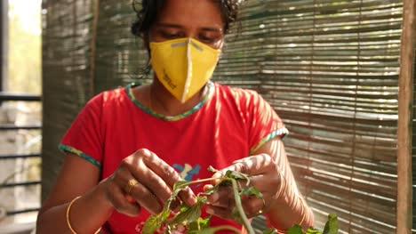 Primer-Plano-De-Una-Mujer-Del-Sur-De-India-Con-Máscara-Recogiendo-Y-Limpiando-Hojas-De-Espinacas-Durante-La-Pandemia-Del-Virus-Corona-Covid19