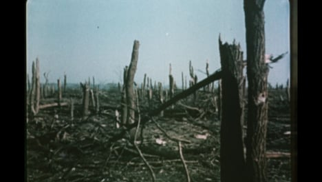 1950s-Soviet-Nuclear-Bomb-Test-Aftermath-